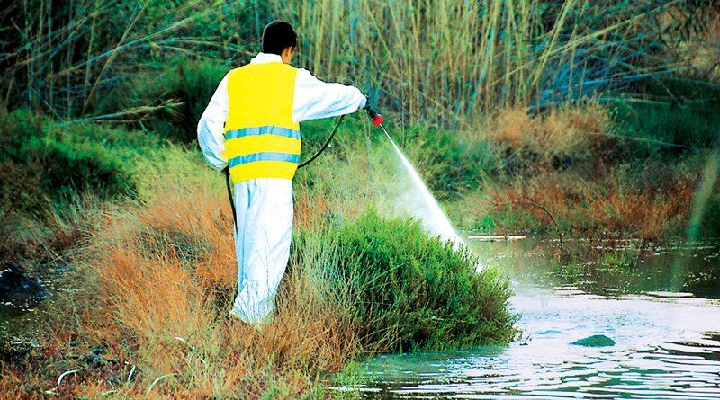Παρασκευή 9 Ιουνίου: Η τρίτη μάχη με τα κουνούπια στα 3Β - Που θα γίνουν ψεκασμοί