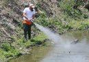 Δήμος 3Β: Συνεχίζεται η μάχη με τα κουνούπια