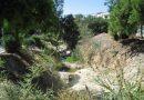 Άλιμος: Καθαρίζουμε το ρέμα στην Αγίου Δημητρίου