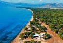 Συναγερμός στο Σχινιά για το φαινόμενο που παρατηρείται στη θάλασσα
