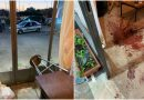 Κουκουλοφόροι έσπασαν εκλογικό κέντρο υποψήφιου δημάρχου, στη Γλυφάδα (ΕΙΚΟΝΕΣ)